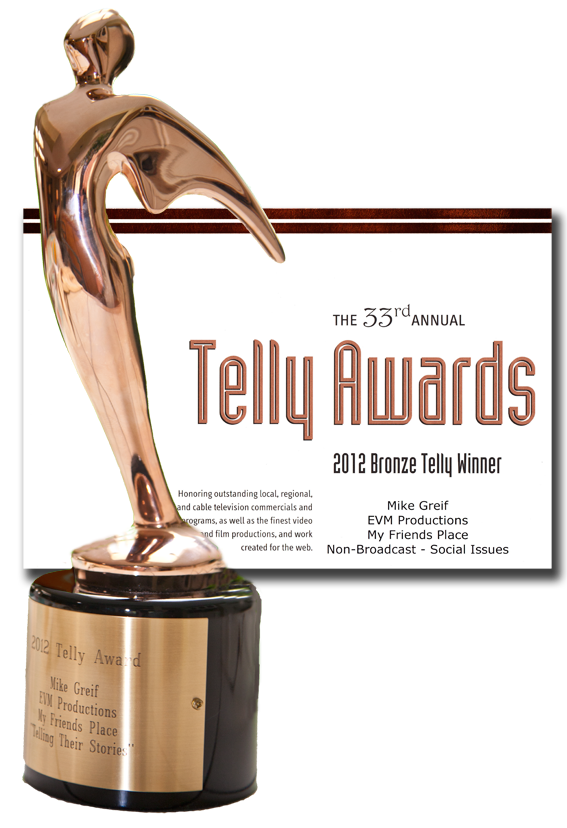 Telly Award My Friends Place